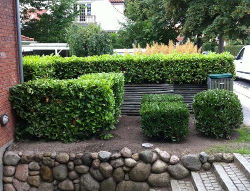 Havearbejde og Hækkeklipning – Case 4